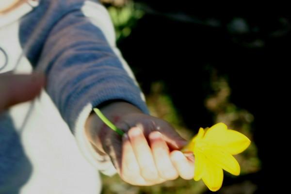 momfatale.gr baby offering yellow flower