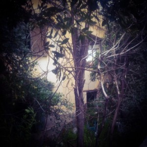 deserted former madhouse on momfatale.gr 1