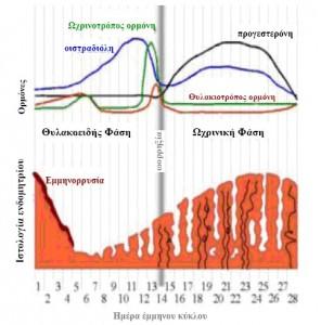 έμμηνος κύκλος και ορμόνες