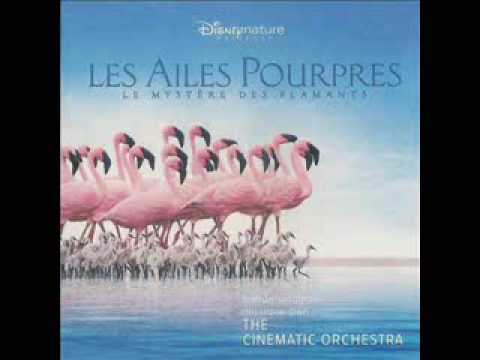 cinematic orchestra- arrival of the birds