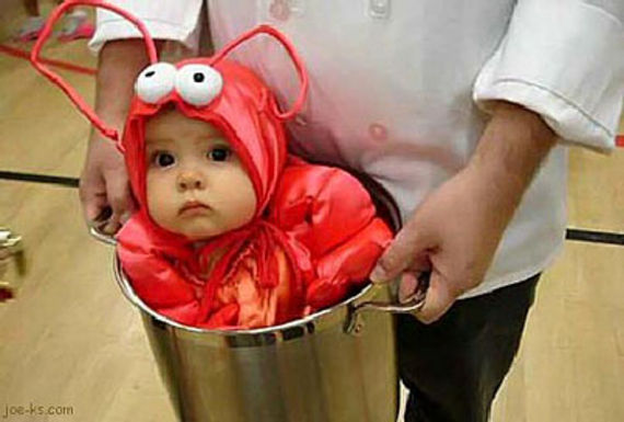124-babies-in-halloween-costumes-1000-awesome-things