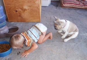 kids-act-like-animals-eating-from-dogs-bowl__605
