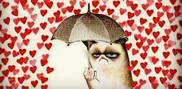 cat hearts
