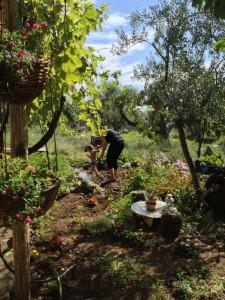 momfatale.gr best little garden ever