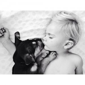 baby dog 5