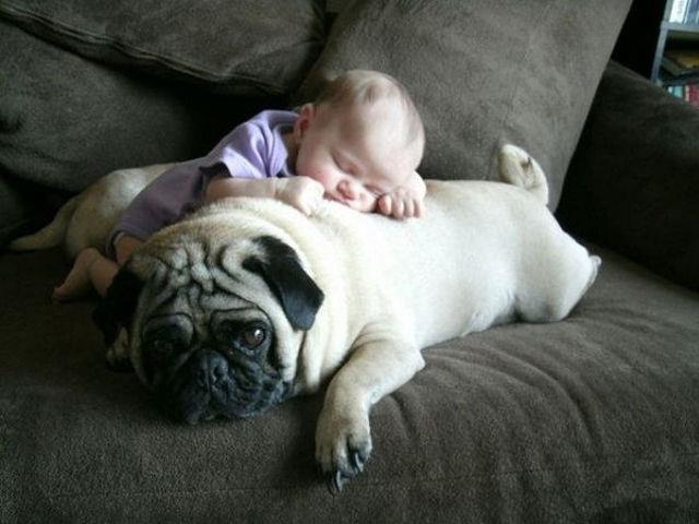 vqaer-baby-sleeping-on-puppy