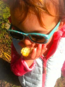 toddler wearing sunglasses