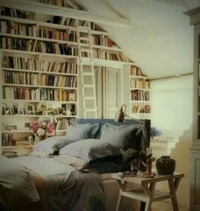 amazing bedroom bookcase