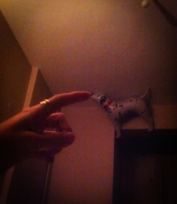 dog balloon finger perspective