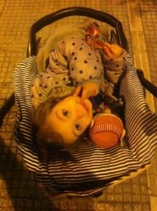 daphne in her stroller