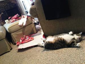 XX-animals-destroying-Christmas-6__605