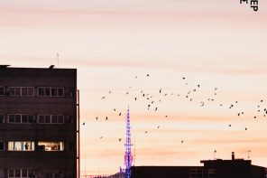 Η Οπτική Ταυτότητα του 23ου Φεστιβάλ Ντοκιμαντέρ Θεσσαλονίκης.